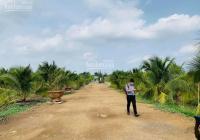 Bán đất vườn đường Lương Ngang Ấp 3, Tân Nhựt, Bình Chánh