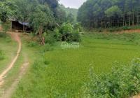 Bán đất Lạc Hưng, Yên Thủy, Hòa Bình, đất cách đường HCM 1 km, đồi bát úp, cách HN chỉ 60km