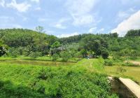Siêu phẩm đất làm trang trại nhà vườn tuyệt đẹp tại Lạc Thủy, Hòa Bình với diện tích 4ha