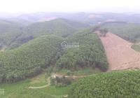 Chuyển nhượng 1,5ha đất, có 400m2 thổ cư tại Yên Thủy, Hòa Bình