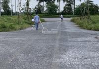 Chủ đầu tư làm đường và làm khuôn viên dự án New City Phố Nối, Yên Mỹ, Hưng Yên