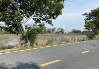 Đất gần mặt tiền Tam Thôn Hiệp, Rừng Sác, tổng DT 40ha, giá chỉ 1,2 triệu, hỗ trợ tách thửa nhỏ