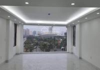 Chính chủ bán nhà mặt phố Miếu Đầm, 9 tầng x 50m2, mặt tiền 5m. Gía 25,8 tỷ