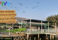 Bán nhà vườn sinh thái 1711m2, xe hơi vào tới nhà, có sẵn ao cá, cây trồng, bồ câu, nhà ở