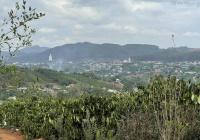 1753m2 đất Tầm Xá, Đông Thanh, view cực đẹp, sổ sẵn, đường xe hơi giá 1,3 tỷ