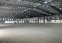Cho thuê kho xưởng khủng 25000m2 mặt tiền đường Trần Đại Nghĩa, phường Tân Tạo A, Quận Bình Tân