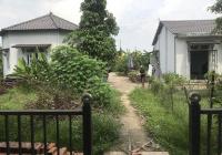 Bán nhà đất có vườn cây Cù Lao Bạch Đằng vị trí đẹp nhất khu vực, 2 mặt tiền (nhựa và sông)