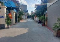 Đất sổ đỏ ngõ phố Bùi Thị Xuân, Hải Dương