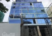 Cho thuê tòa nhà Trương Công Định, Khu Bàu Cát, P14, Q. Tân Bình, 9x20m, hầm trệt 5 lầu