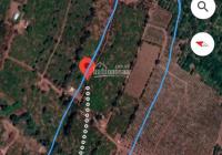 Bán hơn 3ha đất Chư Prông, Gia Lai