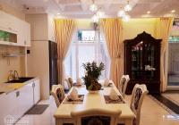 Bán lại căn biệt thự đường Quách Văn Tuấn, P12, Tân Bình 8mx20m nhà 4 lầu giá 25.5 tỷ TL