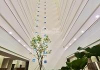 Bán căn hộ Studio 47m2 Block B Topaz Twins tầng cao cực thoáng mát : 1 tỷ 520tr