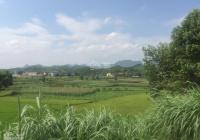 Bán đất Kim Bôi, Hòa Bình view cánh đồng đường 2 ô tô tránh nhau thế đất cao ráo cách HN 60km