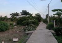 609m2 đất thổ vườn thị trấn Cần Giuộc đối diện chợ Kế Mỹ, SHR, đường xe hơi - Giá: 2,9 tỷ