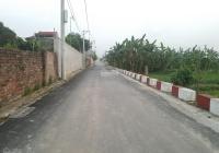 Bán đất Đại Bản, Phú Thị, Gia Lâm