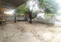 Cho thuê nhà kho 1T1L, 490m2 (14mx35m) có sân rộng đường 6m, P. Cát Lái. LH: 0968370648