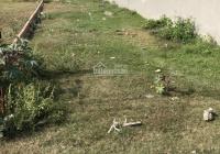 Bán rẻ đất sau cây xăng Minh Toàn, 790tr/ 110m2, SHR