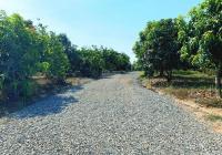 Bán đất vườn cây ăn trái mặt tiền mặt tiền đường ngay trung tâm xã Phú Ngọc giá tốt nhất KV