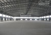 CC cho thuê kho xưởng 500m2 mặt tiền 20m tại Liễu Giai, giá cho thuê thỏa thuận