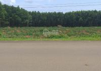 Đất đẹp 68m2 mặt tiền đường trục chính Cao Nguyên Vân Hòa, Phú Yên