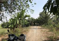 Bán gần 10.000m2 làm nhà vườn, 1,8 tỷ, về Sài Gòn 2,5h, gần KDL Xẻo Quýt