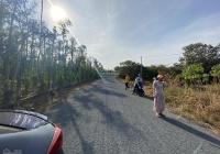 Bán 6 sào đất vườn, mặt tiền đường rộng oto tải, cách suối nước nóng Bình Châu chỉ hơn 9km