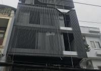 Cho thuê nhà Lê Trung Nghĩa, Khu K300, Phường 12, Q. Tân Bình, 9x20m, hầm trệt 4 lầu