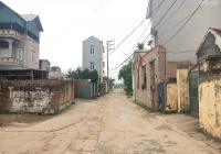 Chính chủ cần bán 103m2 thôn Ngọc Động, Đa Tốn ô tô 7 chỗ vào tận đất
