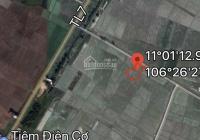 Bán gấp 2220m2 đất ở Tỉnh Lộ 7, Phước Thạnh, Củ Chi, 1.1tr/m2, giá 2.4 tỷ