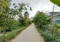 Bán nền 119m2 (4.5x26.5, thổ 100m2) đan 3m, xã Tân Hội Trung, H. Cao Lãnh, Đồng Tháp