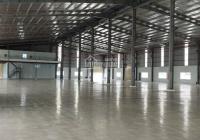 Cho thuê kho xưởng diện tích 700m2, hẻm lớn đường Quang Trung, P. 8