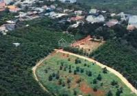 Dịch bệnh bán gấp đất nghỉ dưỡng sườn đồi, view thung lũng thành phố, 600m2 - 1,45 tỷ tặng luôn nhà