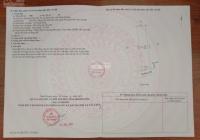 Đất nền ngay Vĩnh Tân, Tân Uyên chính chủ cần ra gấp. Giá LH 0338802929