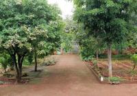 Cần bán 1ha đất nhà vườn nghỉ dưỡng Xuân Tâm, Xuân Lộc, Đồng Nai