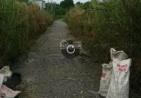 Chính chủ cần bán lô đất vườn Tam Đa, giá 650tr/100m2, LH: 0907079529
