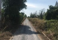 Đất 5000m2 phù hợp đầu tư Lý Nhơn, huyện Cần Giờ, gía đầu tư, thương lượng mạnh