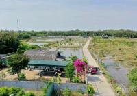Chính chủ gửi bán nhà vườn sinh thái, phong cảnh hữu tình, khu dân cư đông đúc, DT 1711 m2
