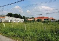 Bán đất Củ Chi, mặt tiền đường nhựa 436, diện tích 267m2, full thổ cư, xã Phú Hòa Đông