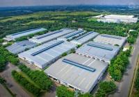 Đất Lộc Tấn, Lộc Ninh, Bình Phước giá 300tr, diện tích 1000m2, đầu tư đón sóng KCN bao lợi nhuận