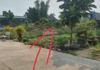 Cần bán gấp miếng đất 95m2 trên đường Đoàn Minh Triết, Thái Mỹ