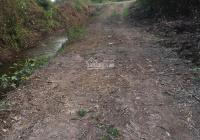 Bán lô đất vườn 1500m2 Kênh 10 cấp 3 Lê Đình Chi, Lê Minh Xuân Bình Chánh