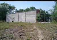 Đất sổ đỏ 130m2 thổ cư, 5*26m, Quốc Lộ 1A, xã Xuân Tâm, huyện Xuân Lộc, Đồng Nai
