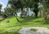 Hé lộ em nhà vườn đẹp sắc nước hương trời tại Cư Yên - LS - HB