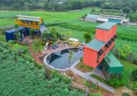 Đất vườn trái cây đường nhà nước, 480tr/sào