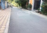Chính chủ bán 46m2 khu quây tôn đường 333, Ngô Xuân Quảng, vị trí cực đẹp