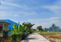 Bán lô góc 99m2 đất thổ giá 1,2 tỷ mặt tiền đường Mỹ Lộc - Phước Hậu, Cần Giuộc, Long An, SHR