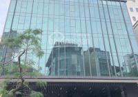 Cho thuê văn phòng DT 150 - 500m2 tại tòa Tecos Building 106 Chùa Láng - Đống Đa - Hà Nội