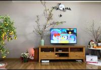 Bán căn hộ Ruby Garden, quận Tân Bình, có sổ hồng, 105m2 2PN 2WC, full nội thất cao cấp