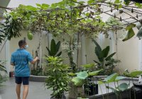 Biệt thự mới xây sân vườn bán gấp gần Nguyễn Văn Trỗi, quận Phú Nhuận, DT ~ 240m2, giá 45 tỷ