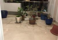 Nhà đẹp mặt tiền đường phường 4, quận 8, cách mặt tiền Phạm Hùng 30m
